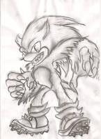 The Werehog by SpyxedDemon