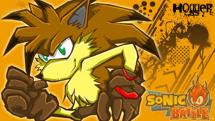 Hogger:: SONIC BATTLE by SpyxedDemon