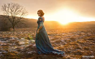 Triss Merigold by Othien by AudentiaGuild