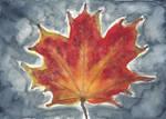Maple Leaf by Ravensilver