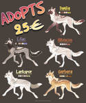 Wolf Adopts 7 -- OPEN [1/5]