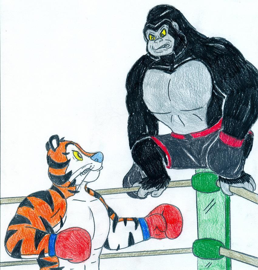 Boxing Tiger Vs Gorilla By Jose Ramiro On Deviantart