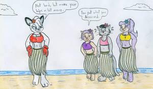Hula Anthros - Barby Koala and Catnapped