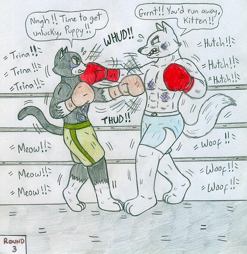 Boxing Hutch Vs Trina By Jose-Ramiro On DeviantArt