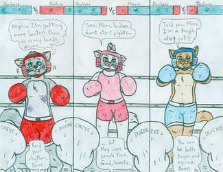 Boxing Spar - Duchess -You - vs Kittens