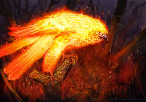 Phoenix by EleMont