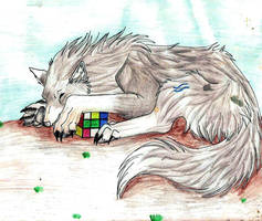 A wolf with a rubix cube by silverwolf-alphess