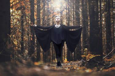 Illumination by PicturePuttonen