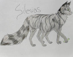 Silesias by AngelicFlash