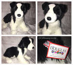 Douglas Medium Floppy Dogs- Chase Border Collie