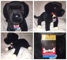 Douglas Rescue Dogs- Coupe Black Lab Mix by Disney1123