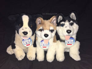 Disney Store ''Snow Dogs'' Plush Dogs
