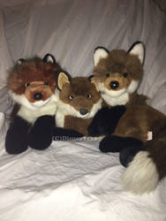 Douglas Cuddle Toys- Red Foxes