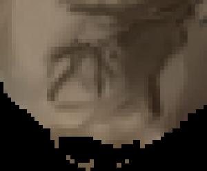 scrabee's Profile Picture