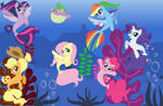 Seaponies of the sea