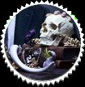 Skull by clio-mokona
