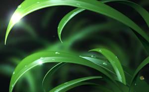 Glass Grass