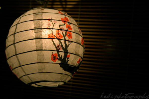 [Resim: Lantern_by_zer0mechanismx3.jpg]