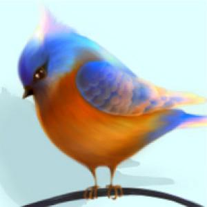NorethNo's Profile Picture