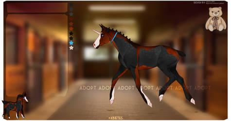 adopt horse (open)