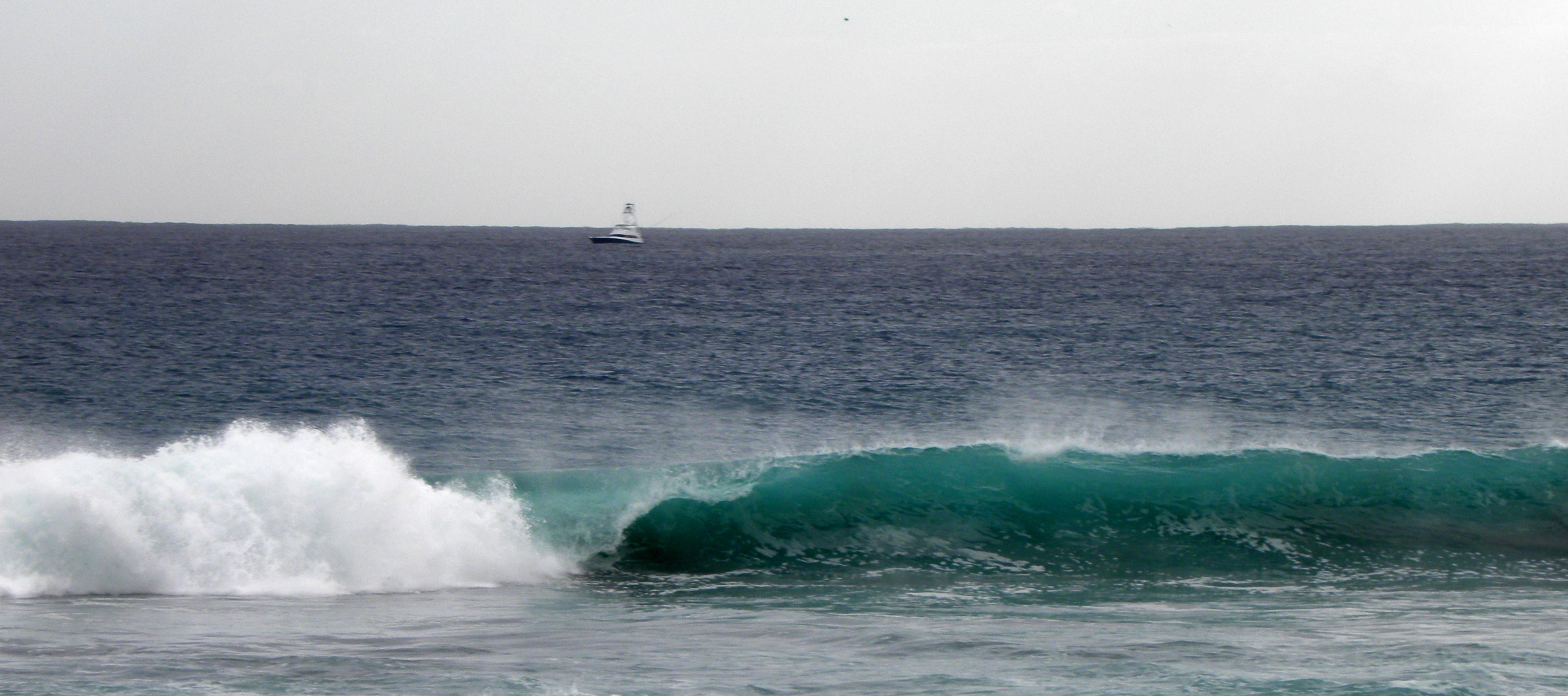 Wave by flowerhippie22 on DeviantArt