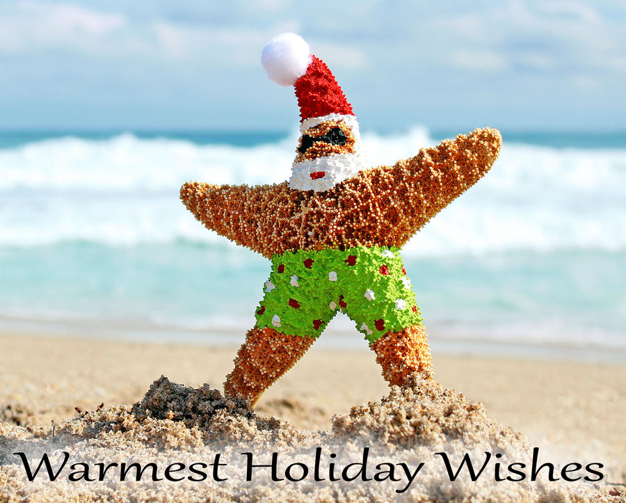Warmest Holiday Wishes by flowerhippie22