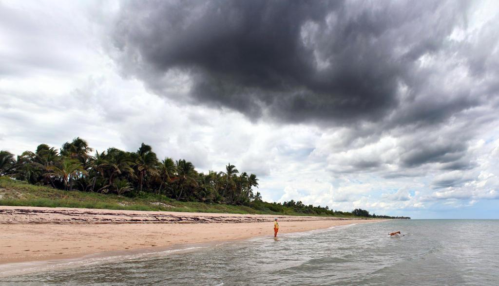 Stormy Beach Day by flowerhippie22
