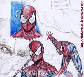 DIE SPINNE - Spiderman sketches