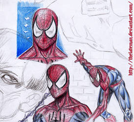 DIE SPINNE - Spiderman sketches by theLateman