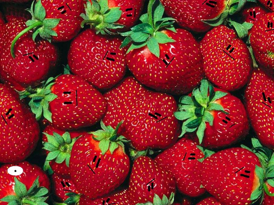 find the cyclops strawberry by thecrazyworldofjack