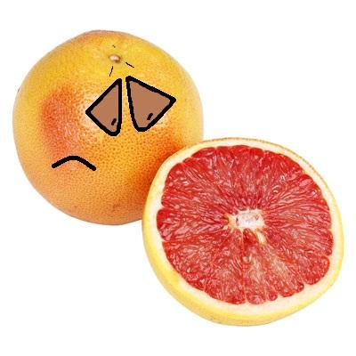 grapefruit slice by thecrazyworldofjack