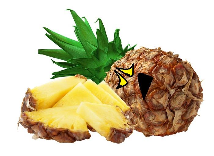 pineapple slice by thecrazyworldofjack