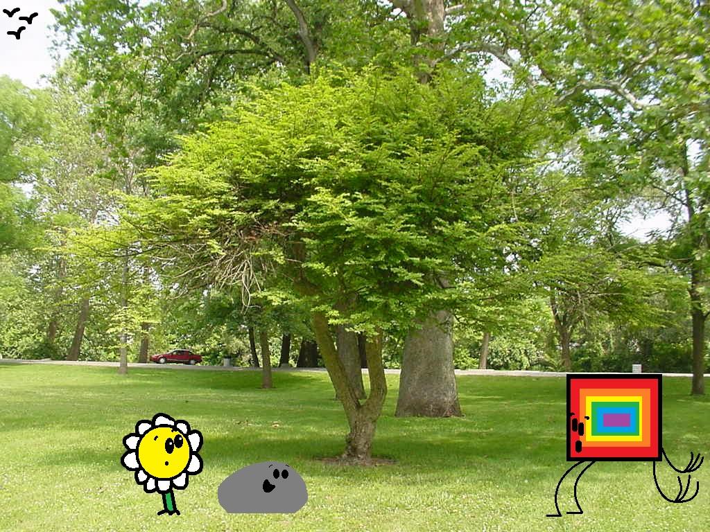 New Tree In The Park by thecrazyworldofjack