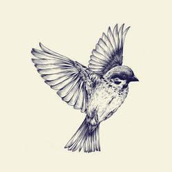 lost bird by teaganwhite