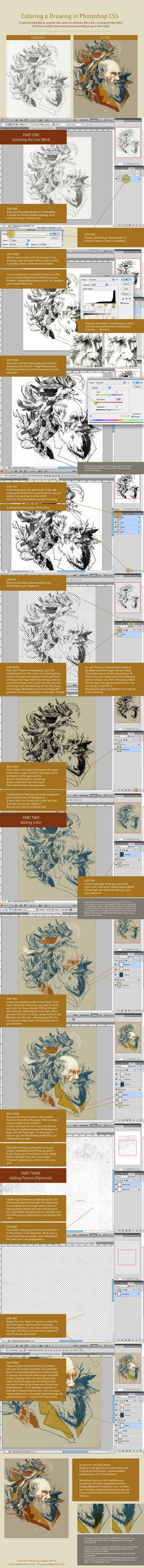 Coloring a Drawing in Photoshop CS5 by teaganwhite