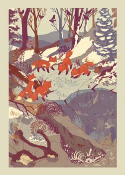 Fisher Fox