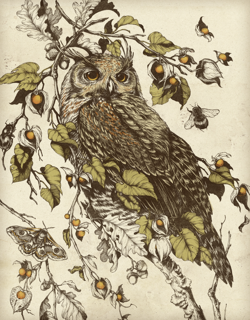 Image gallery teagan white for Websites similar to society6