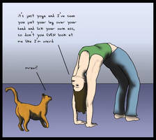 yoga and cats by rapunzell