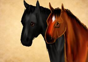 The Two Finest by appaloosamaniac