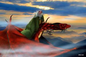 Dragon Flight by Rowdy-Dawg
