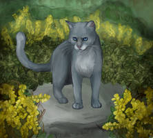 Bluestar of Thunderclan by Warriorseyes