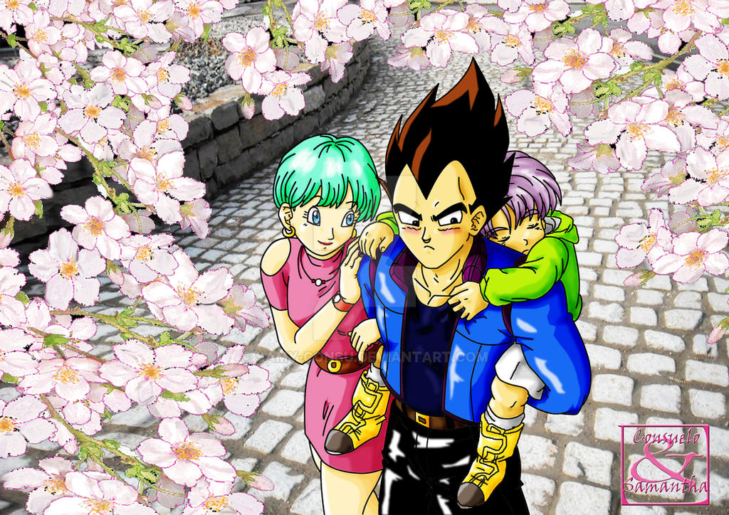 Dragon ball z bulma and vegeta