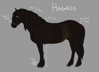CV | Hagrid by Hidden-Bubbles
