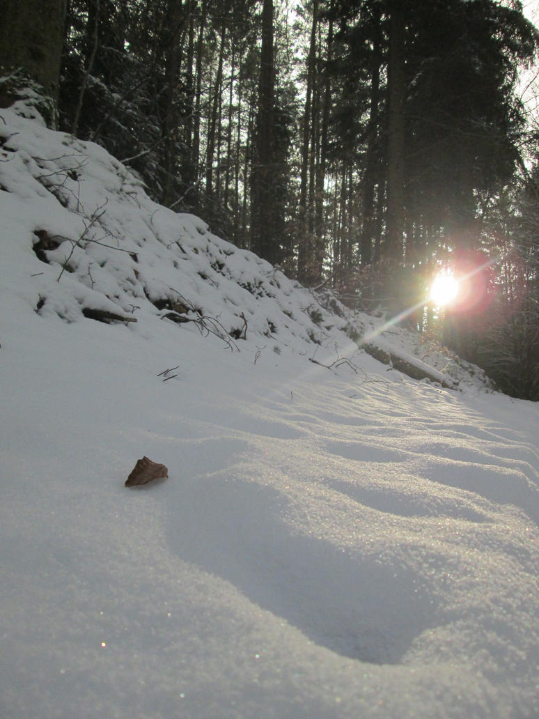 A winter morning by AmdirBrethil