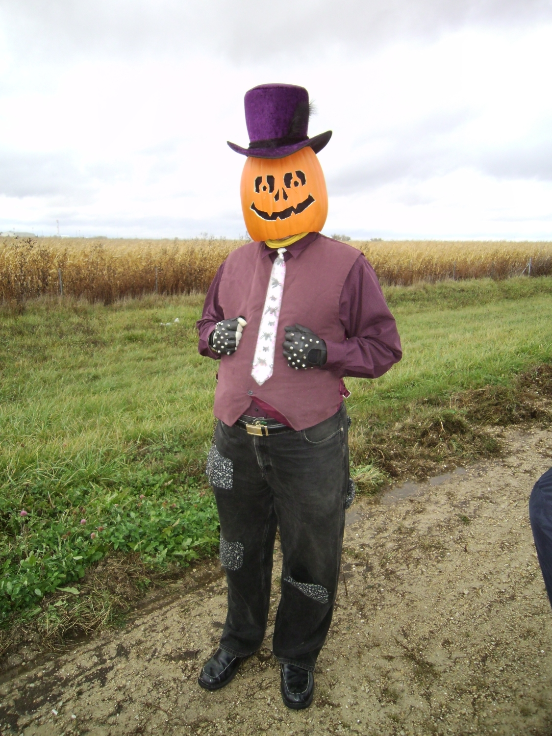 Gourdon Pumpkinhead in Cortland 2 by Windthin