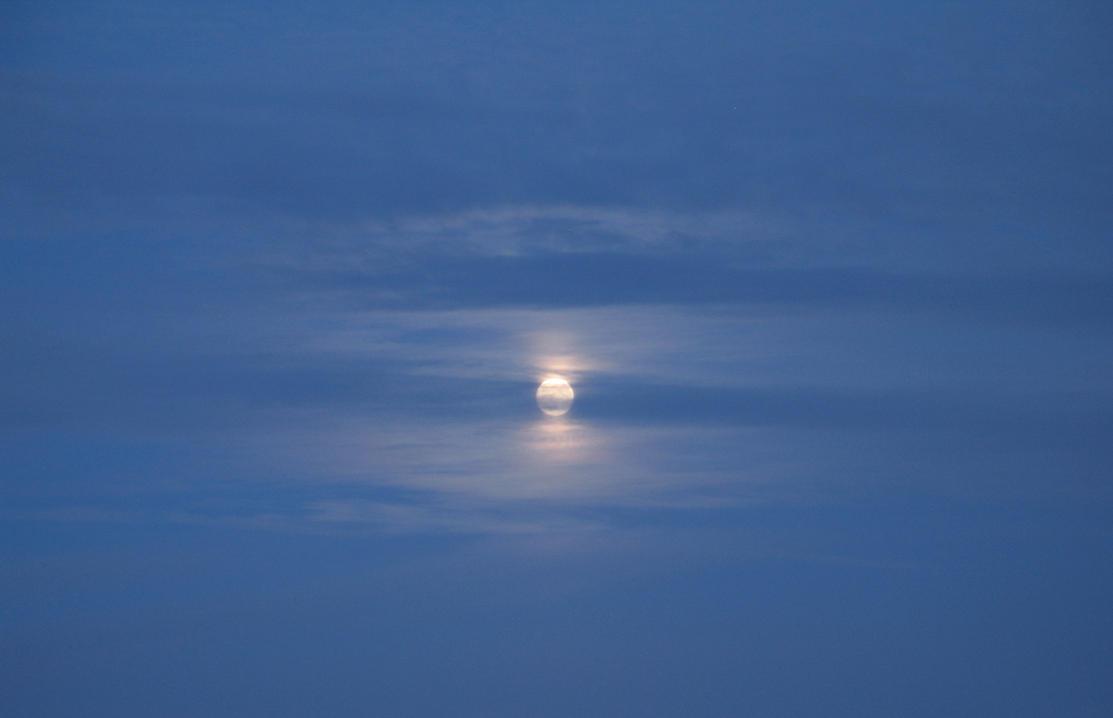 Misty Moon 1 by Windthin