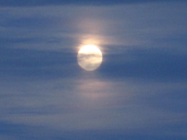Misty Moon 2 by Windthin