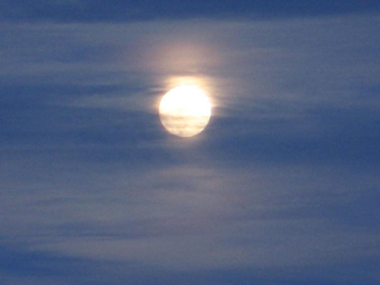 Misty Moon 4 by Windthin