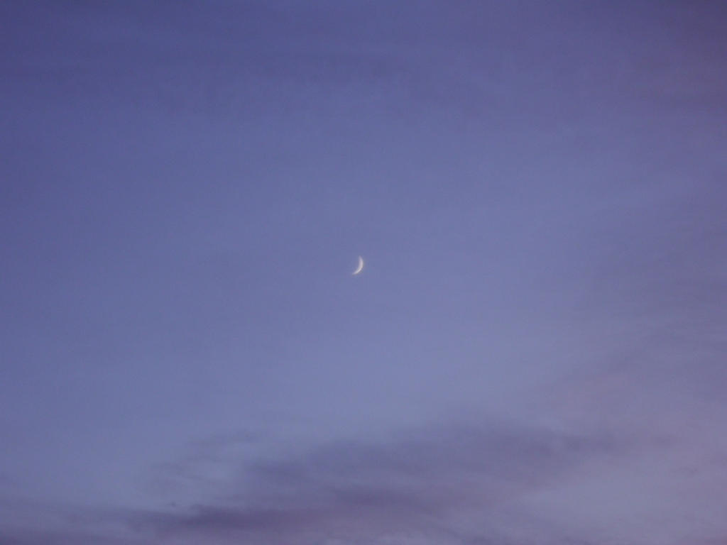 Crescent Moon at Sunset by Windthin