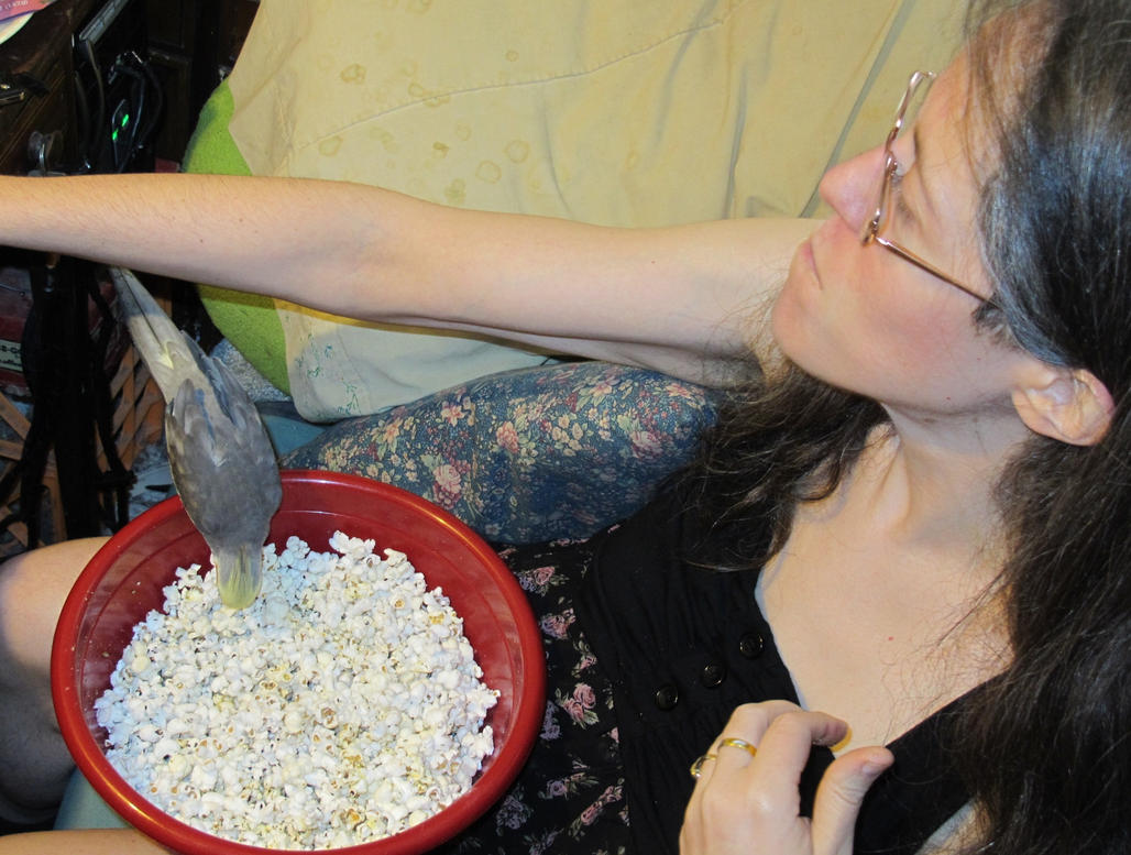 Maui Finds Popcorn! 4 by Windthin
